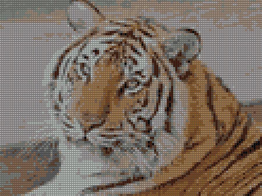 Вышивка Тигр